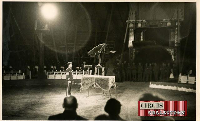 Spectacle Le contorsionniste Suisse Oréval cirque Knie
