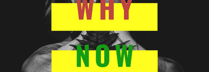 Download Navy kenzo - Why now