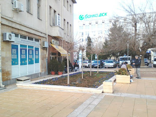 Flower Bed, Yambol City Centre, yambol,