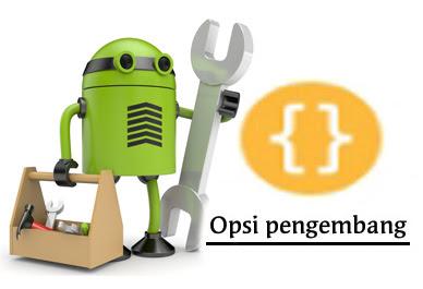 Cara Mengaktifkan Opsi Pengembang di Semua Jenis Android