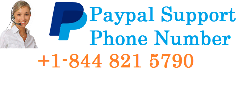 Paypal Support Nummer