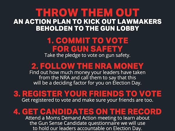 The Parkland Gun Massacre-Activism-Action-Accountability