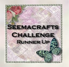 I was runner up at Seema Crafts
