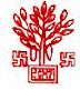 Bihar Health Society Contract jobs April-2012