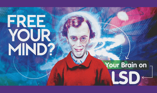 Free Your Mind: Your Brain on LSD