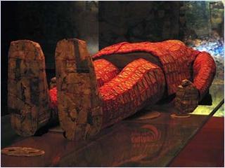 พิพิธภัณฑ์ราชวงศ์ซีฮั่น (Museum of the Western Han)
