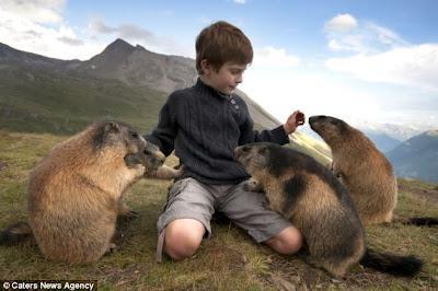 Seorang Anak Bersahabat Baik dengan Marmut Liar