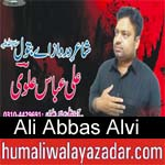 https://www.humaliwalyazadar.com/2018/09/ali-abbas-alvi-nohay-2019.html