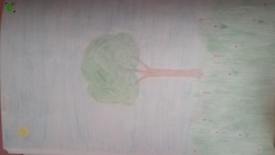 drzewo - rysunek