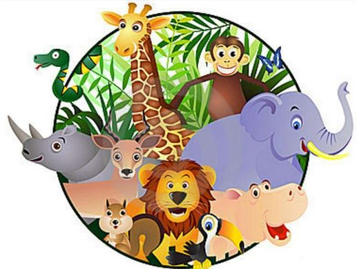 Image of: Animal Kingdom Ciriciri Umum Kingdom Animalia dunia Hewan Berpendidikan Ciriciri Umum Kingdom Animalia dunia Hewan Berpendidikan
