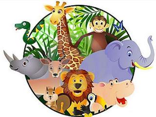 Ciri-ciri Umum Kingdom Animalia (Dunia Hewan)