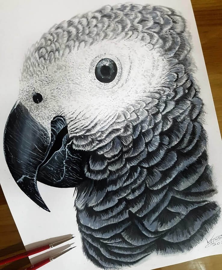 05-Baby-African-Grey-Kyle-Duca-Animal-Paintings-www-designstack-co