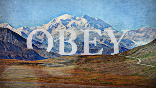 Who do you obey?