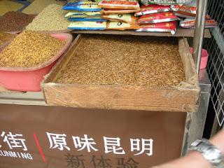 Kunming vermi