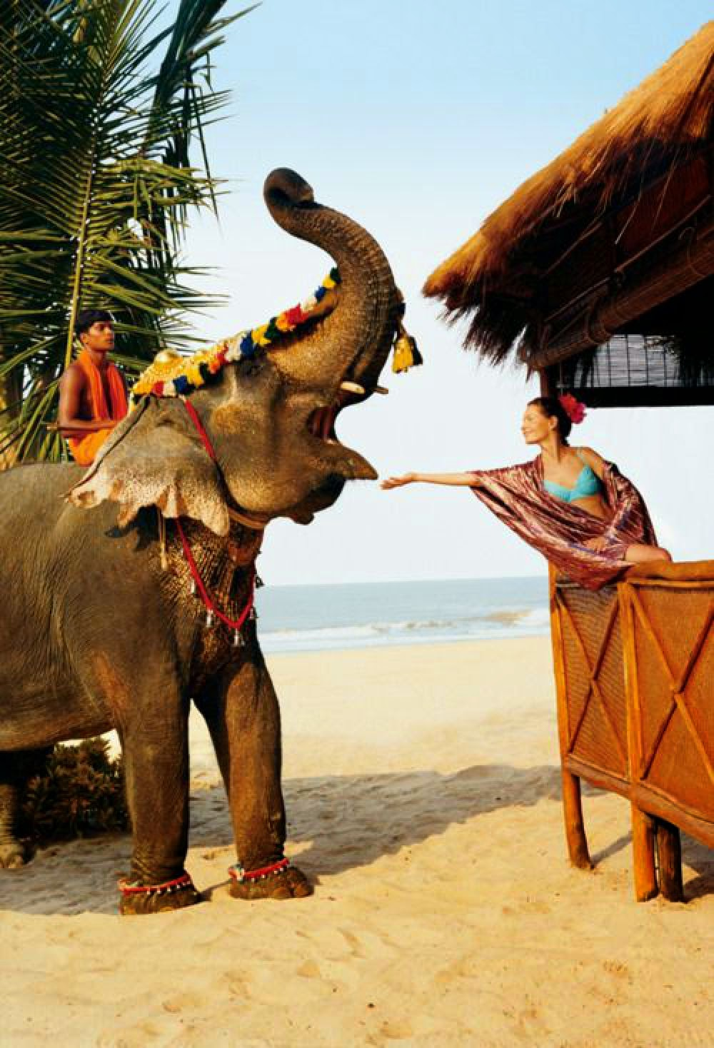 10 Best Backpacking Destinations in India | Goa
