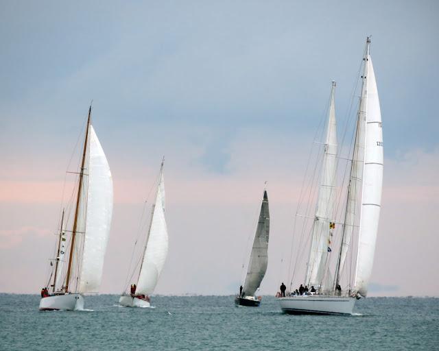 Sailboats in November, Terrazza Mascagni, Livorno