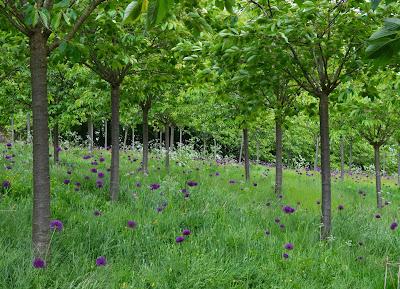 Alnwick Garden, Garden of Fairy Tales - orchard