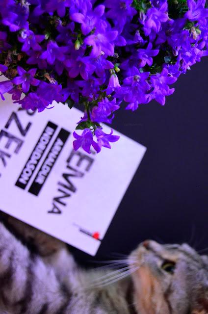 ciemna rzeka   książka   recenzja   kwiat   kot