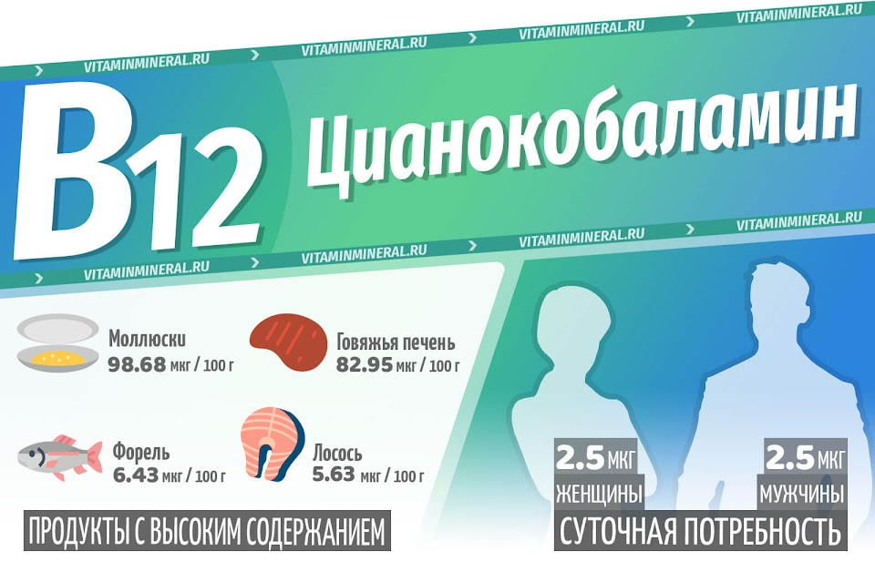 Витамин B12 (Цианокобаламин) — инфографика