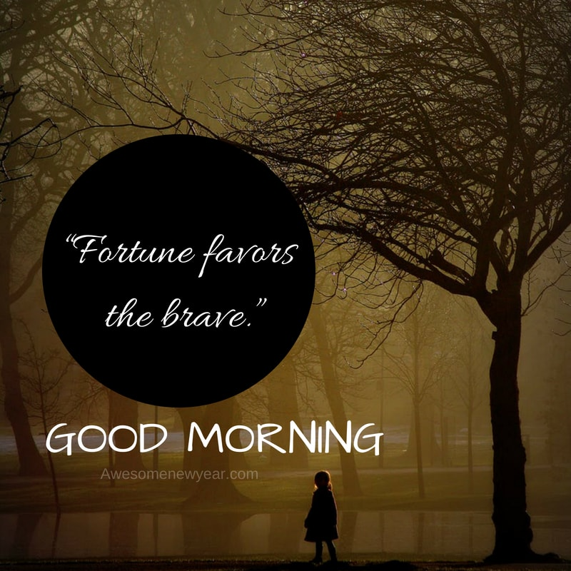 Download Beautiful Good Morning Images, Greetings & Pictures for Free