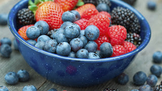 Stunned scientists find BLUEBERRIES are better at destroying cancer cells than conventional radiation therapy alone