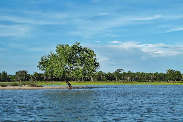 Ilha do Cajueiro, em Tutóia no Delta do Parnaíba