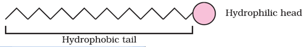 Mechanism of Micelles formation