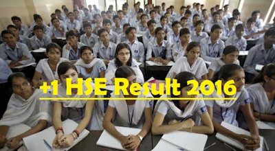 Plus one hse result 2016