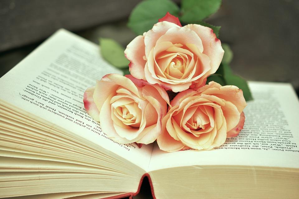 Livro e rosas