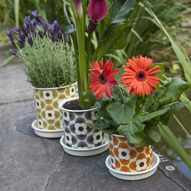 Cheap Gardening Ideas: Cheap And Easy DIY: Ideas For A Pretty Garden On A Budget