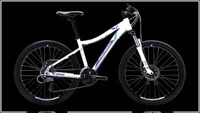 Harga Jual Sepeda Gunung Polygon Cleo 2.0