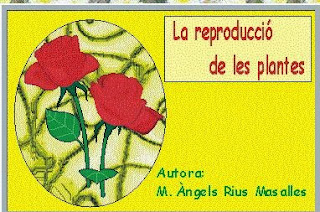 http://clic.xtec.cat/db/jclicApplet.jsp?project=http://clic.xtec.cat/projects/repflor/jclic/repflor.jclic.zip&lang=ca&title=La+reproducci%F3+de+les+plantes