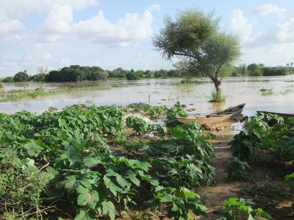 More Global Floods & Violent Storms Vegetable%2Bgardens%2Bunder%2Bwater%2Bin%2BBoubon%252C%2Bnear%2Bthe%2BNiger%2BRiver