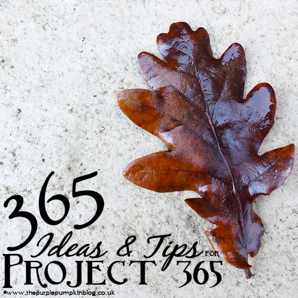 365 Ideas & Tips for Project 365 #P366 #Photography