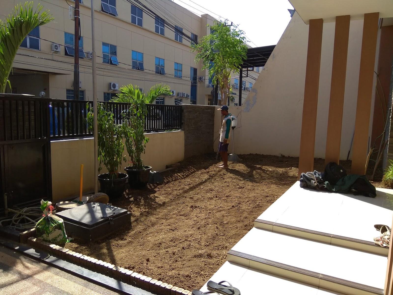 Cara Mudah Membuat Taman Sendiri Dirumah
