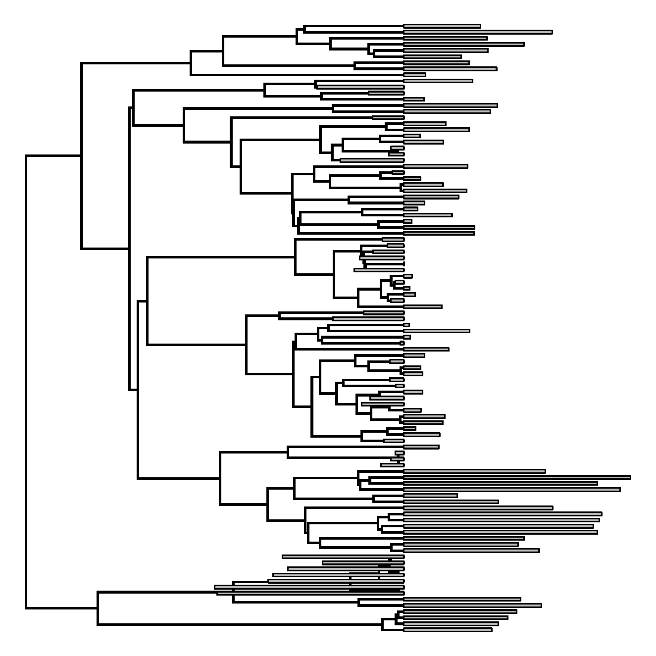 Phylogenetic Tools For Comparative Biology May