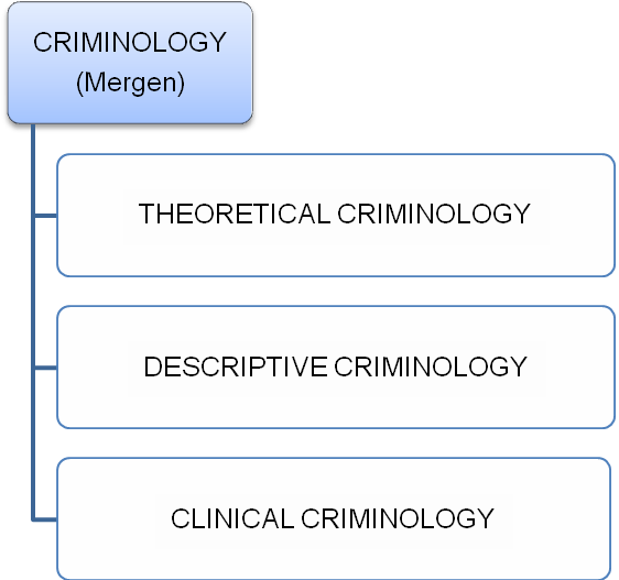 Theoretical Criminology: Definition Of Criminology