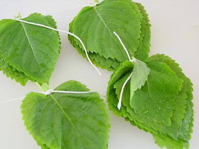 It Efficacy Hidden Leaf Tea Mint and Rosemary