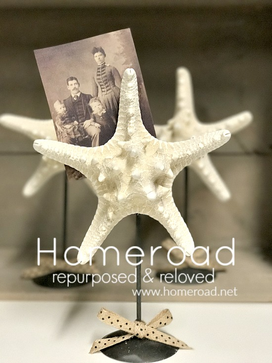 nautical starfish photo display