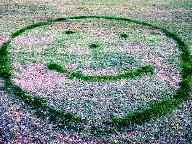 Contoh Foto Desain Taman Dan Rumput Paling Keren, Asli Top Banget