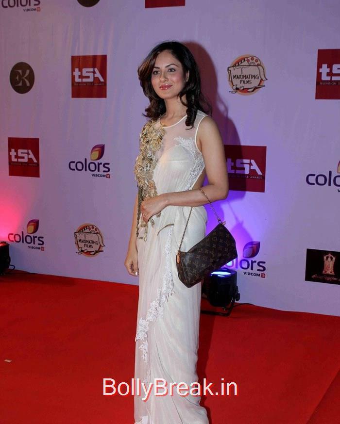 Television Style Awards, Tina Dutta, Sukriti Kandapal Hot Pics At Television Style Awards 2015