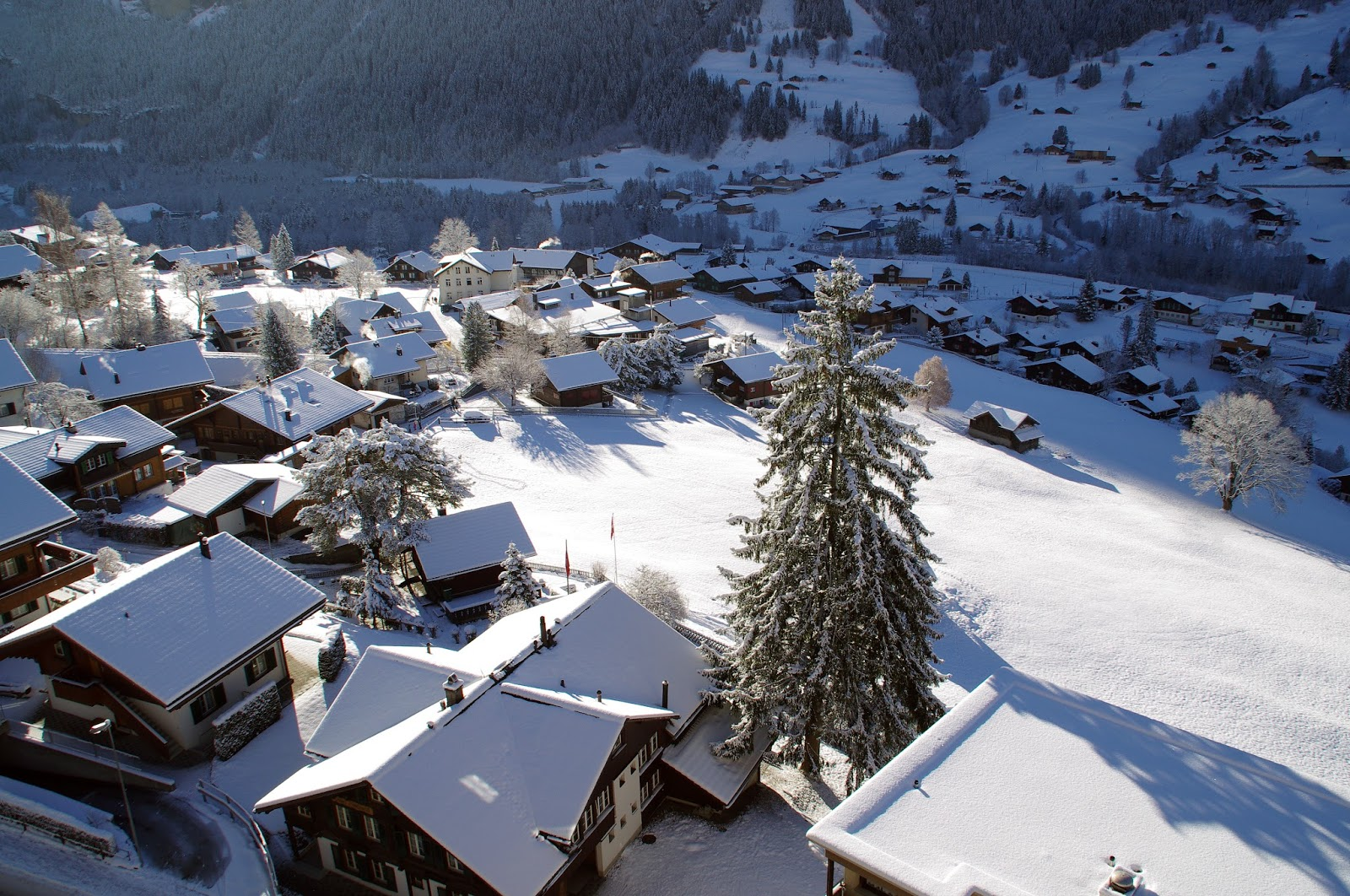 Grindelwald Switzerland Winter Snow