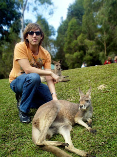 Kangaroo, Currumbin Wildlife Sanctuary review, Gold Coast
