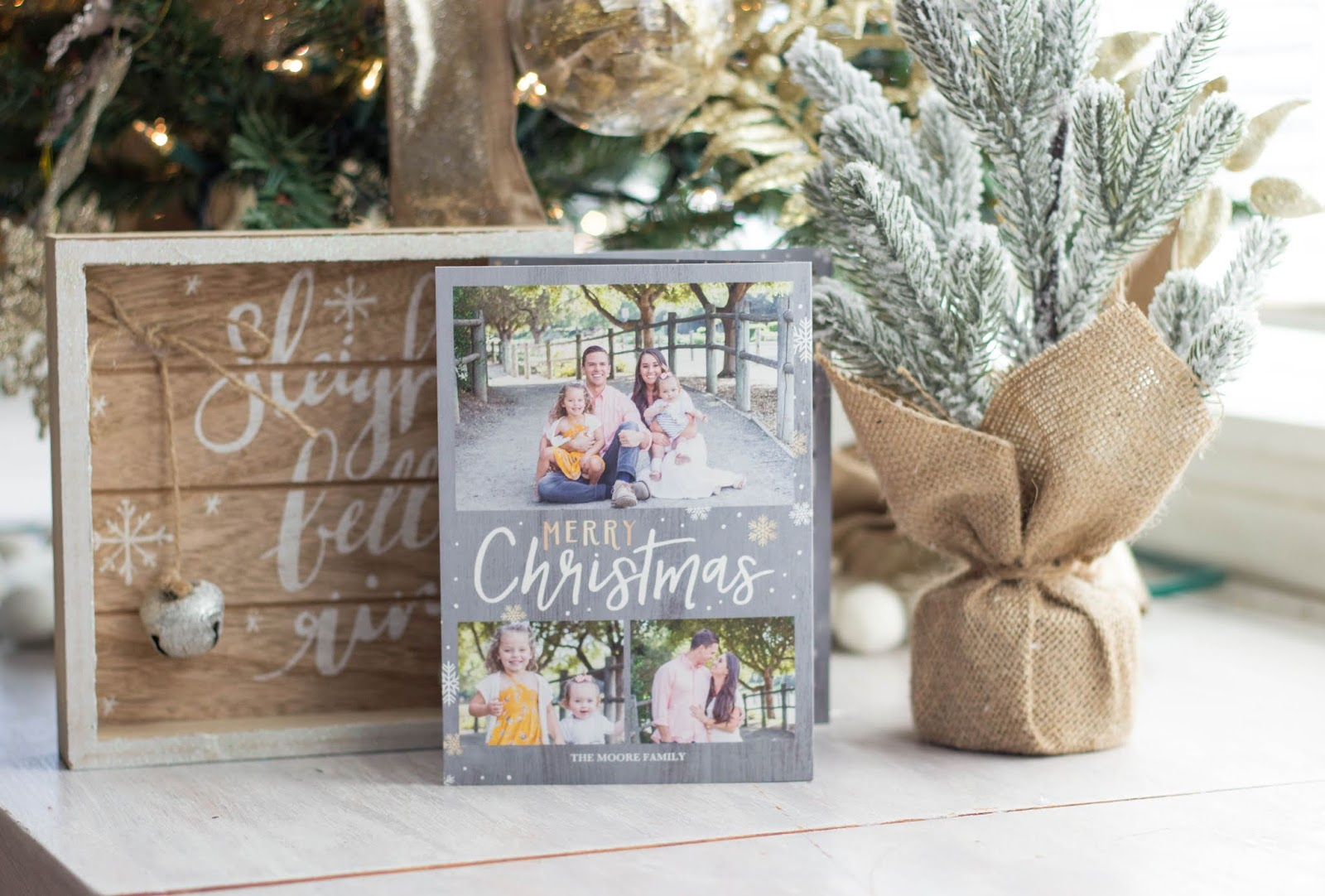 2018 Christmas Cards! - For the Joy of Life.