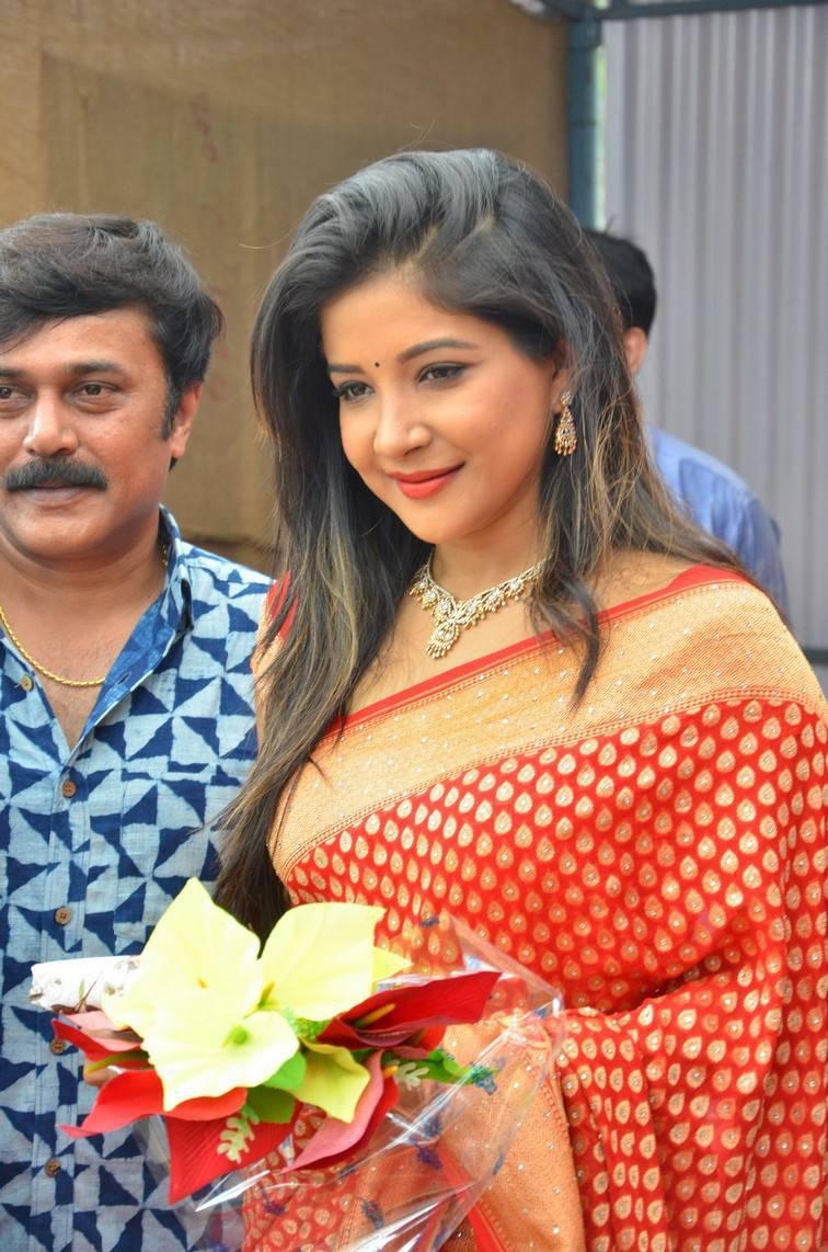 Glamours Hindi Girl Sakshi Agarwal Photo shoot In Orange Saree