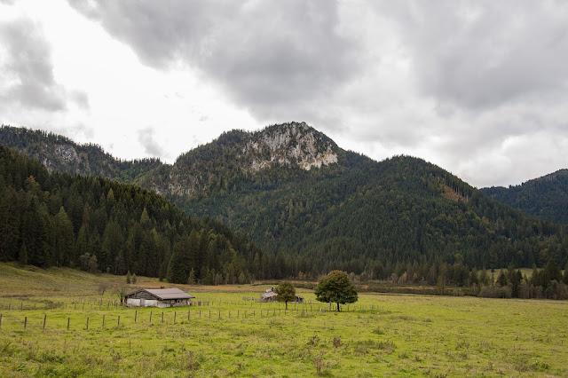 Rundweg Röthelmoos Almen – Weitsee  Wandern Ruhpolding  Wanderung Chiemgau 09