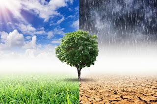 3 Macam Iklim di Indonesia
