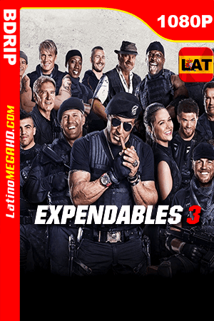 Los Indestructibles 3 (2014) Latino HD BDRIP 1080P ()