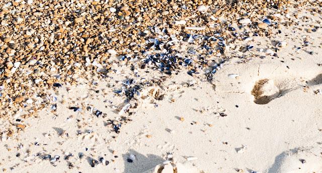 capbreton playa, francia