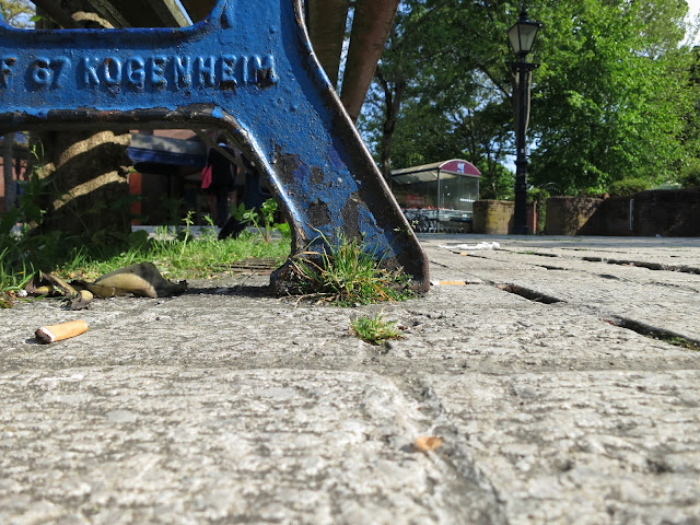 Clump of grass at foot of blue metal bench on grey paving stones.